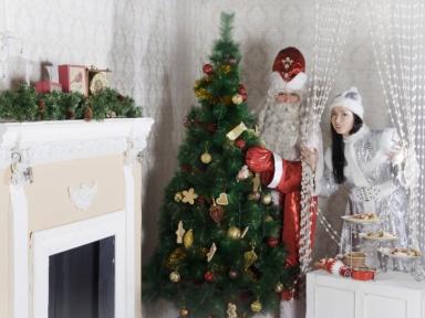 Дед Мороз на дом Москва