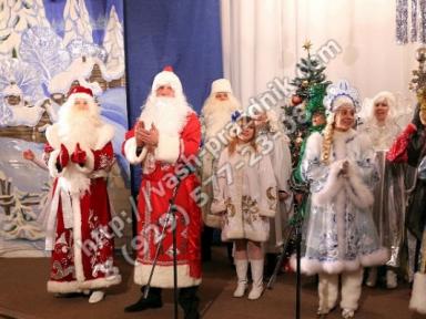 Дед Мороз Красногорск